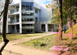 Mulungushi University courses