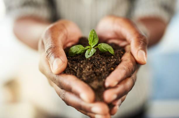 Principles Of Environmental Management