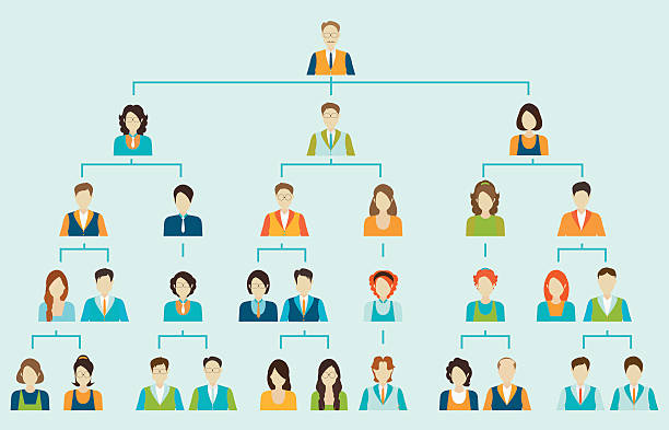 What is an organizational chart and why is it important?