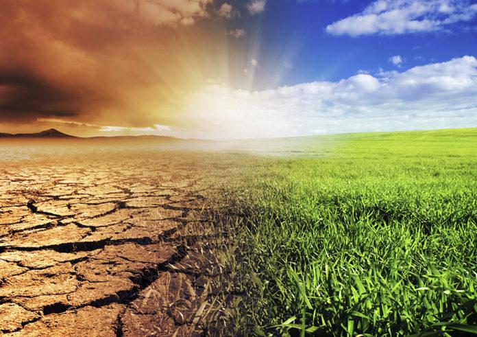 Types of environmental impact assessment